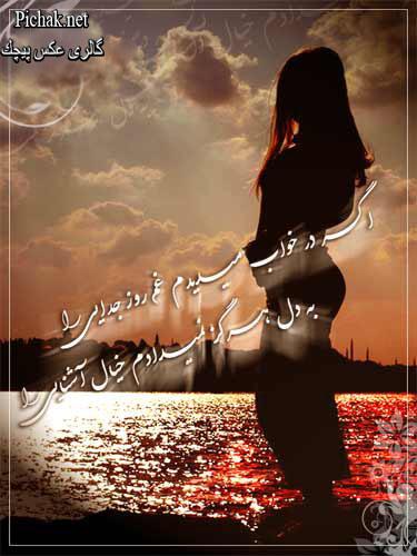 عكس تصویر تصاویر پیچك ، بهاربیست Www.bahar22.com